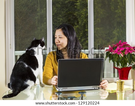 Mature Asian woman looking into family cat face while working at home with notebook computer on glass table with large windows in background - stock photo