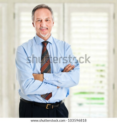 Mature businessman in his office - stock photo