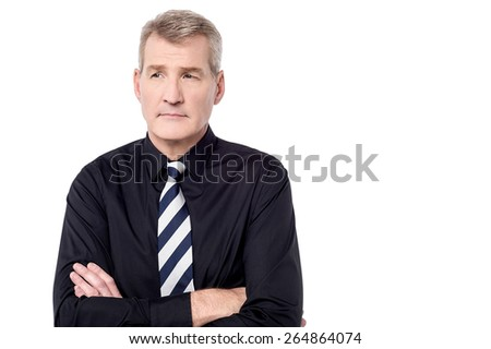 Mature businessman posing with confident  - stock photo