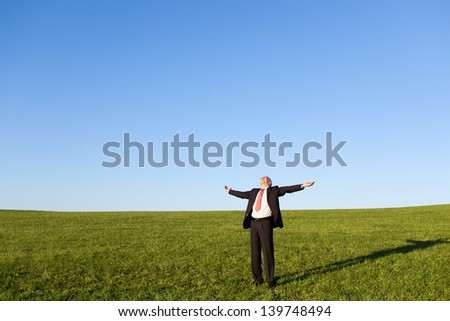 Mature businessman with arms outstretched standing in field against sky - stock photo