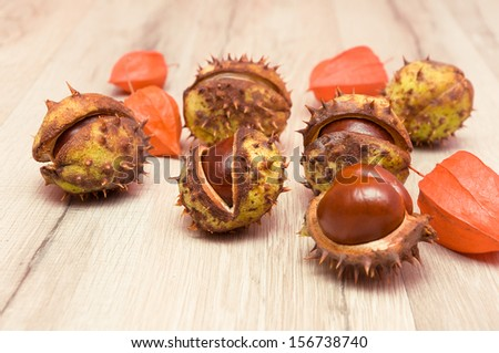 mature chestnuts and cape gooseberries close-up on a wooden board. horizontal photo. - stock photo