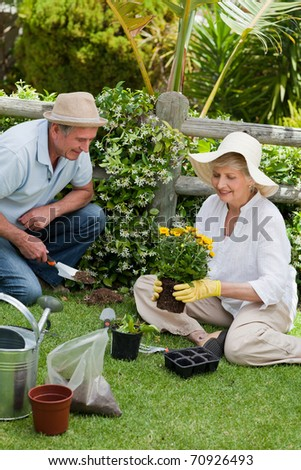 Mature couple working in the garden - stock photo