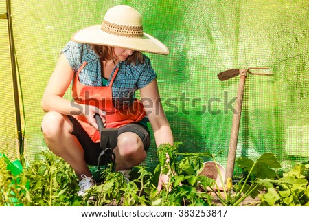 Mature farmer woman with gardening tool working in her garden greenhouse