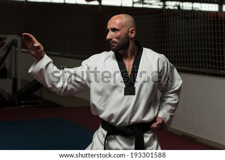Mature Man Practicing His Karate Moves