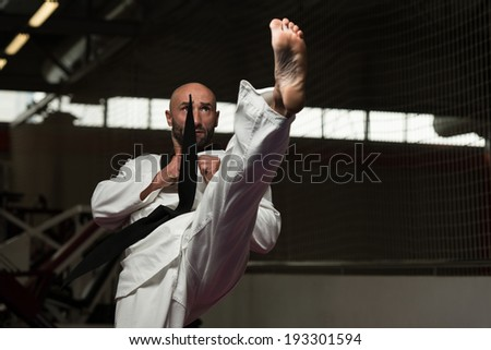Mature Man Practicing His Karate Moves - stock photo