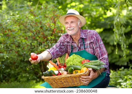 Mature man with straw hat presenting a tomato