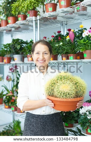 mature woman chooses cactus at flower store - stock photo