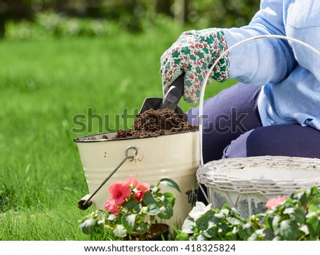 Mature woman gardening, she planting flowers, close up