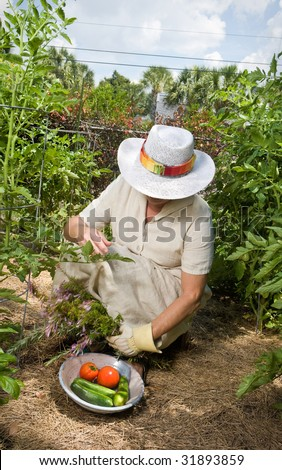 Mature woman in straw hat and linen dress working in her garden. Movement blur on arm holding rosemary.