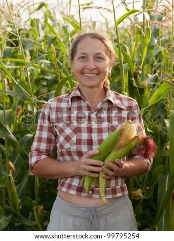 Mature woman peeking corn on the field - stock photo