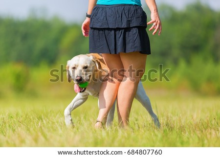 mature woman plays with a labrador on the meadow