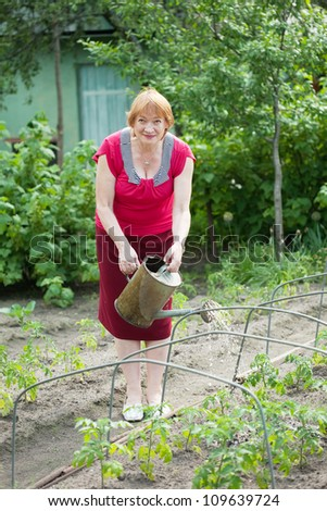 Mature woman watering vegetables plant  with  watering pot  in field