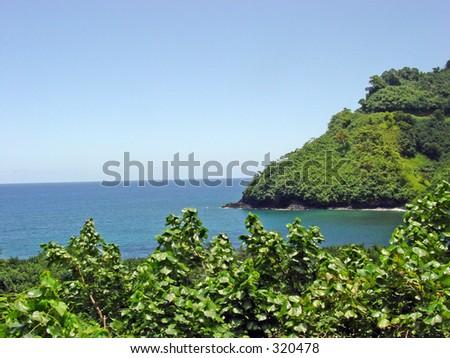 Maui beauty - stock photo