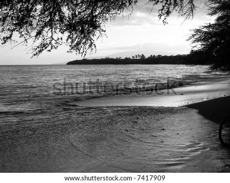 maui waves on the beach - stock photo