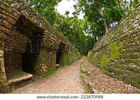 Maya pyramid in Yaxchilan archeological site, Chiapas, Mexico - stock photo