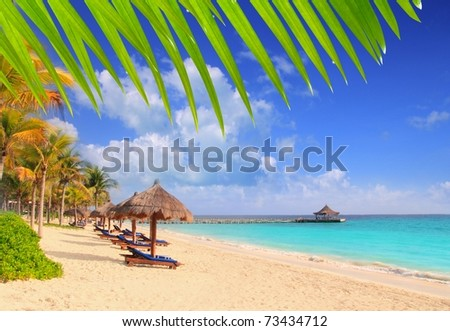 Mayan Riviera tropical beach palm trees sunroof turquoise Caribbean sea [Photo Illustration]