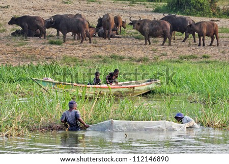MBURO, UGANDA - JUNE 13: Ugandans flock to the only source of water during a time of drought on June 13, 2012 in Mburo, Uganda. This river, though full of crocodiles, must be fished to survive. - stock photo