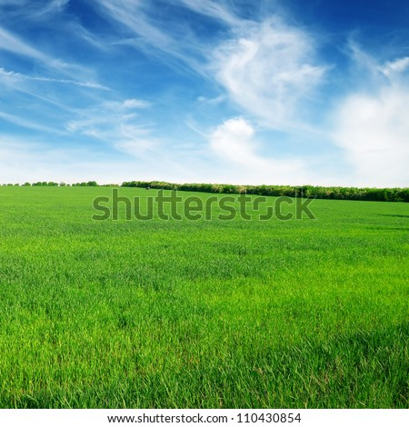 meadow and blue sky - stock photo