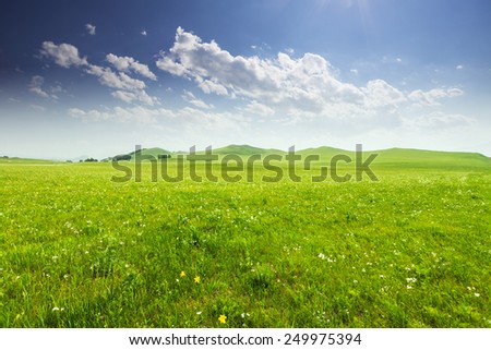 meadow and cloud sky in spring   - stock photo