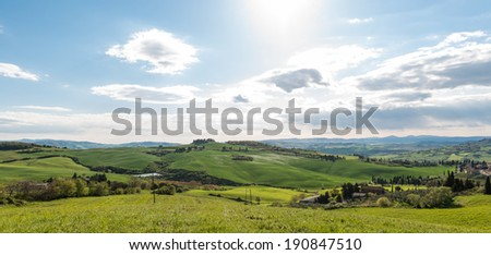 Meadow and cypresses in Val d'Orcia, Tuscany Italy