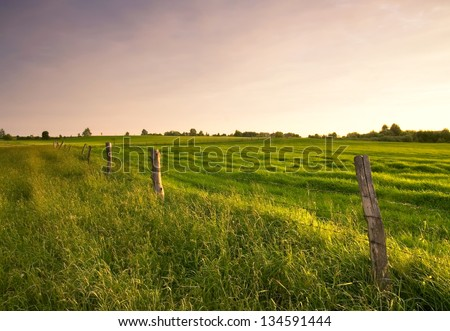 meadow and fence at sunset - stock photo