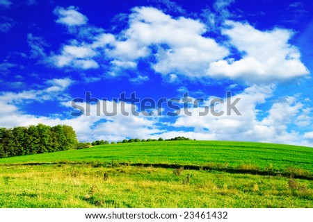 meadow and the beautiful blue sky covered by clouds