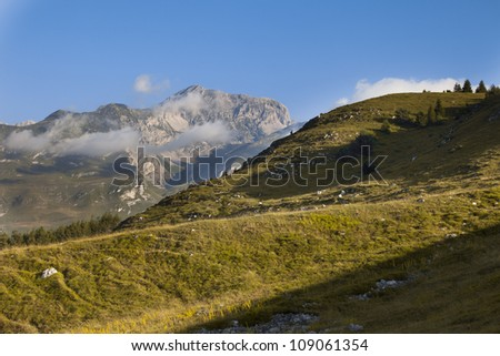 Meadow and trees -  Brenta in the background - Trentino - stock photo