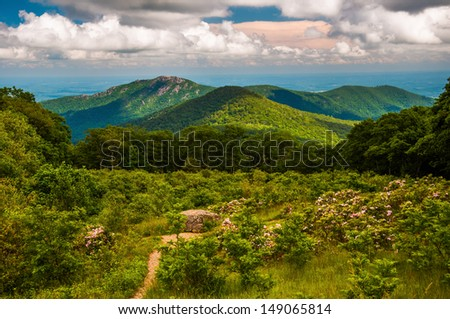 Meadow and view of Old Rag from an overlook on Skyline Drive in Shenandoah National Park, VA. - stock photo