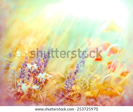 Meadow flowers (made with color filters) - stock photo