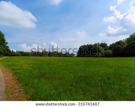 Meadow, forest and sky