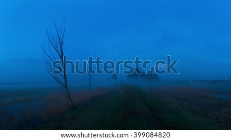 Meadow in dusk. Night landscape. Dirt road passing through a meadow.  High resolution panoramic photo.  - stock photo