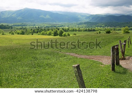 Meadow in Great Smoky Mountains National Park, Tennessee - stock photo