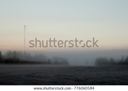 Meadow in mist and fog