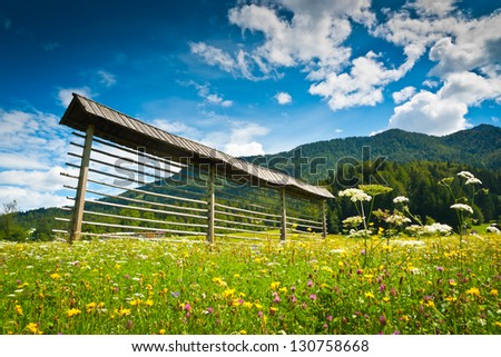 Meadow in Planica valley, Ratece, near the borders of Slovenia, Austria and Italy - stock photo