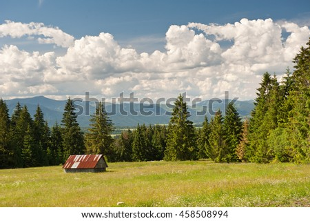 Meadow in summer with small white house in Western Tatras. Low Tatras and cloudy sky. - stock photo