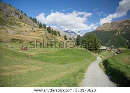 Meadow in the swiss Alps, Zermatt - stock photo