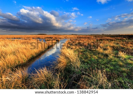 Meadow landscape with beautiful cloudscape in the evening