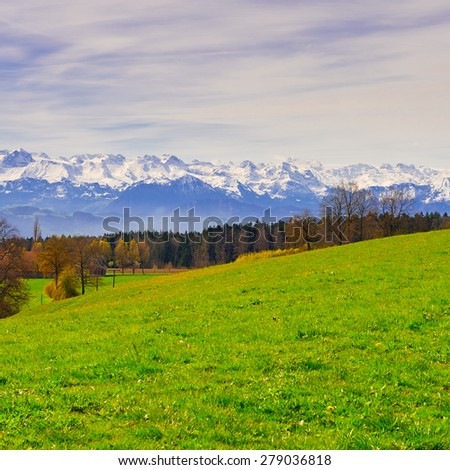Meadow on the Background of Snow-capped Alps in Switzerland - stock photo