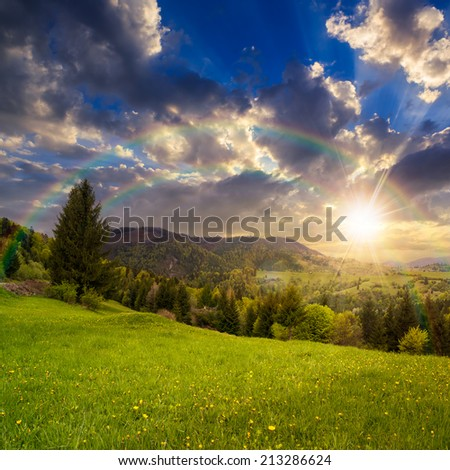 meadow slope of mountain range with coniferous forest and village at sunset