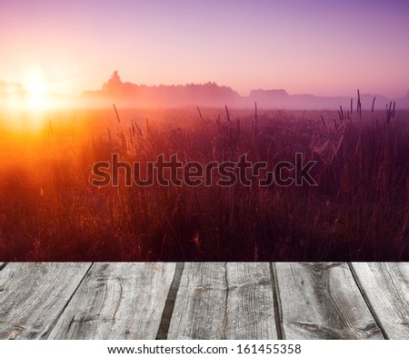 meadow sunset with wood floor - stock photo