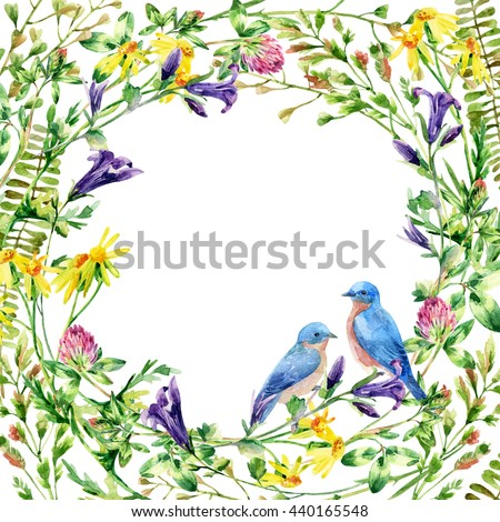 Meadow wildflowers and bird couple background. Watercolor wild flowers wreath card. Bell flower, clover, daisy, weeds and meadow herbs. Watercolor wild field wreath. Hand painted floral illustration - stock photo