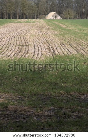 Meadow with farmhouse, Netherlands - stock photo