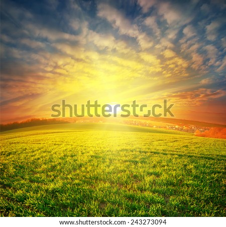 Meadow with green grass under sunset dramatic sky - stock photo