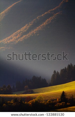 Meadows in the mountains illuminated by rays at sunset