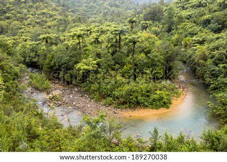 Meander in a Rainforest River, Northland New Zealand - stock photo