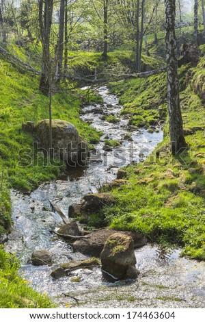 Meandering creek through a ravine - stock photo