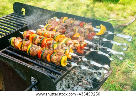 Meat and vegetable skewers on grill in nature fire - stock photo
