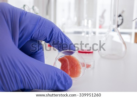 Meat cultured in laboratory conditions from stem cells.Artificial meat - stock photo