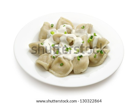 Meat dumplings on a plate on a white background - stock photo