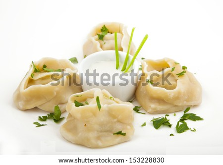 meat dumplings on a plate on white background - stock photo